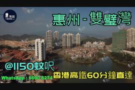 雙璧灣_惠州|@1150蚊呎|香港高鐵60分鐘直達|香港銀行按揭(實景航拍)